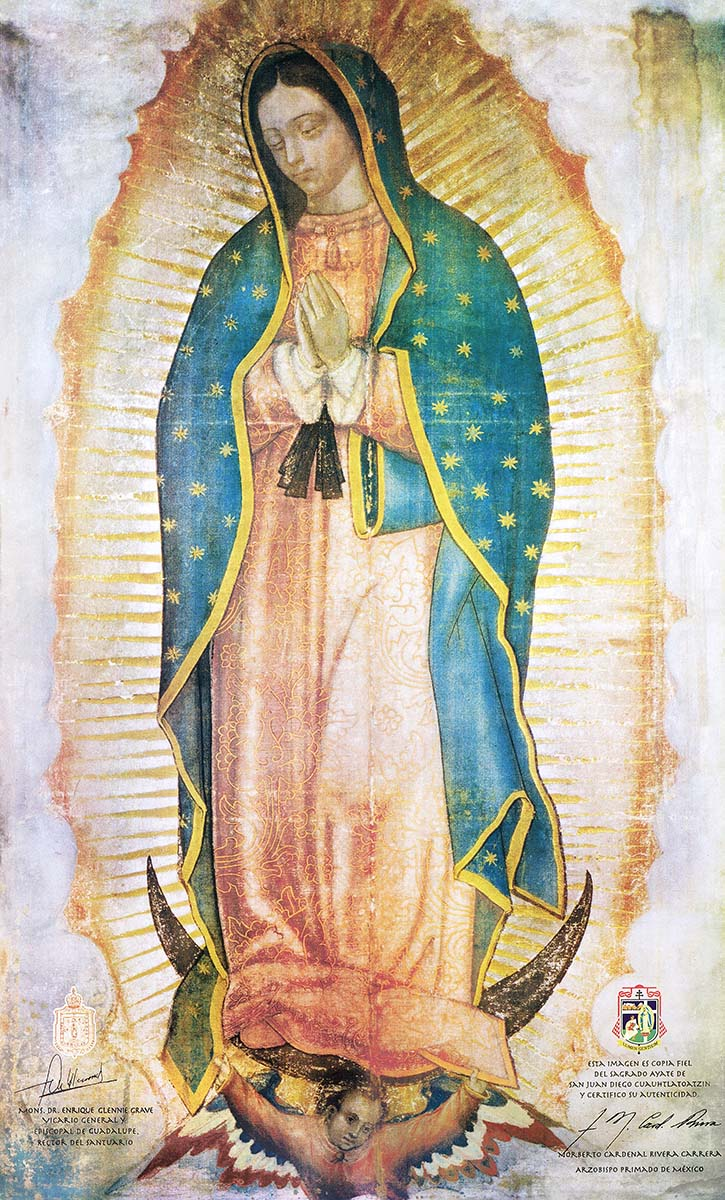 A high quality Our Lady of Guadalupe picture.