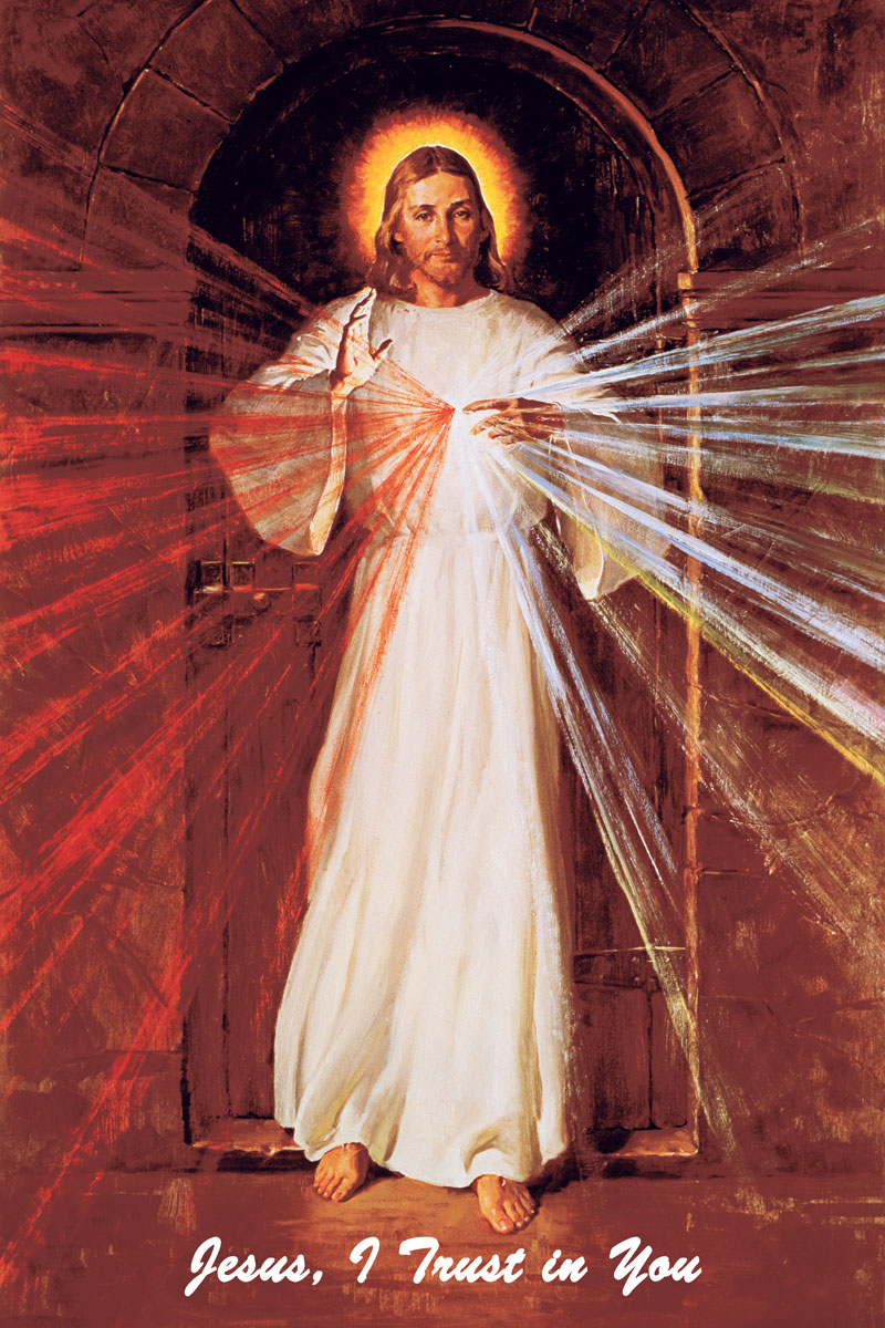 A high quality Skemp Divine Mercy picture.
